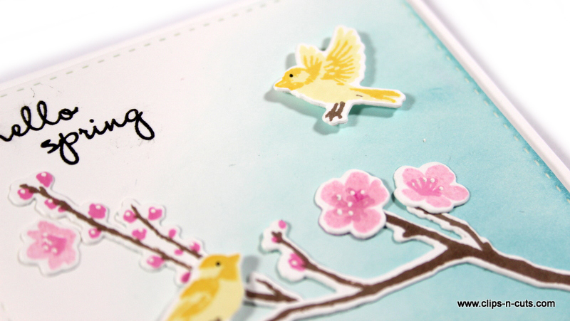 hero arts birds and blossoms